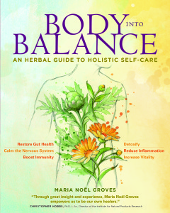 BodyIntoBalance.Cover